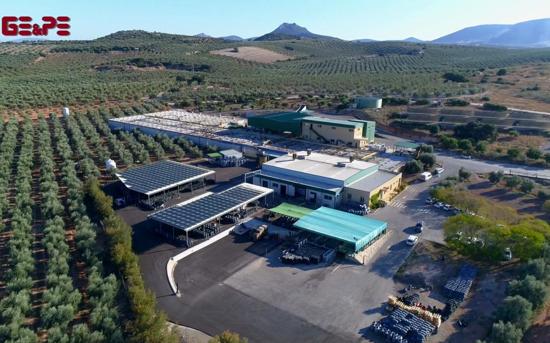 GE&PE ingeniería diseña la planta de autoconsumo de 96 kWn para Estepaoliva S.L.
